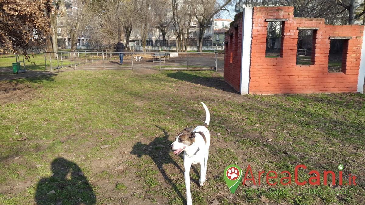 Area Cani Pavia - via Riviera angolo via Don Ubicini