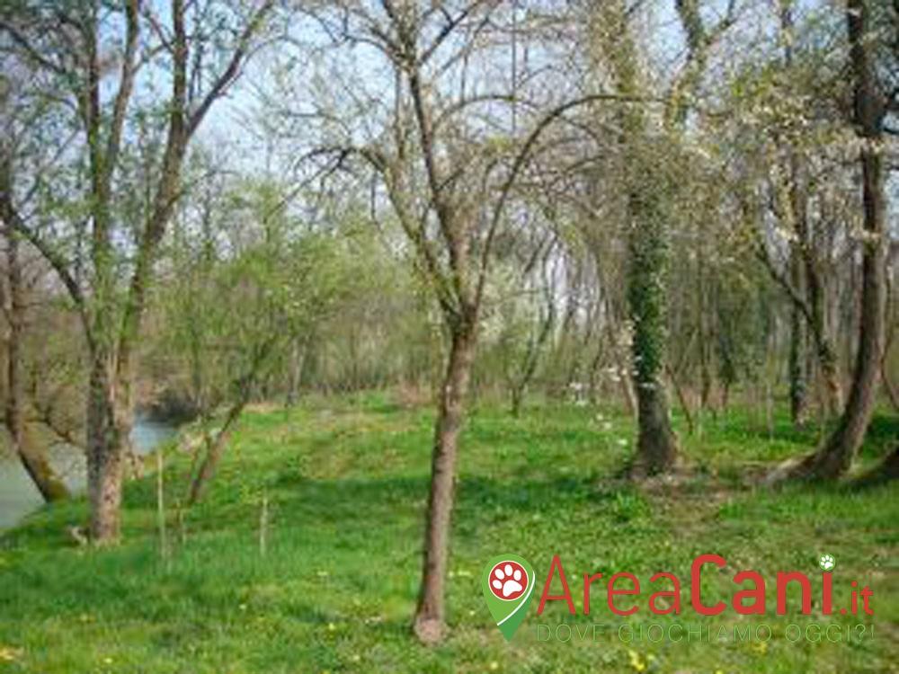 Area Cani Udine - Area Verde via dello Sport
