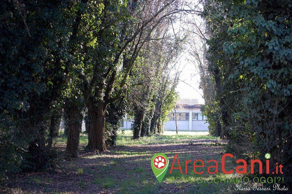 Area Cani Arquà Polesine - Parco Cinofilo Rugby's Dogs