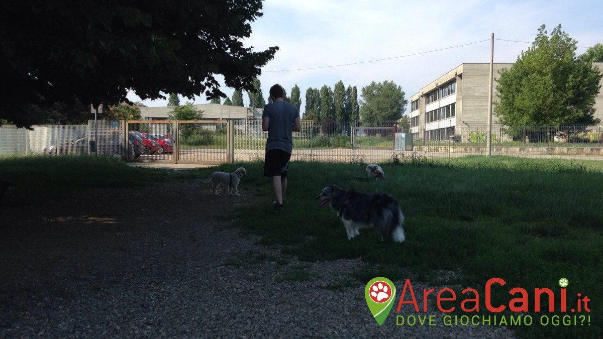 Area Cani Gallarate - via Covetta