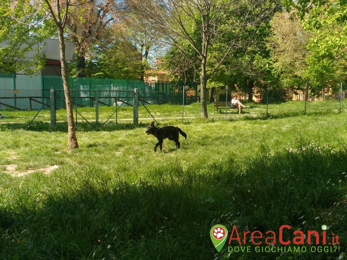 Area Cani Bologna - via Bentivogli