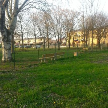 Area Cani San Giorgio di Mantova - via P. Togliatti