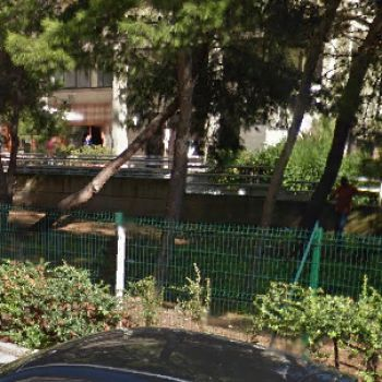 Area Cani Bari - Walter's Dog Park
