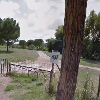Area Cani Roma - Parco Petroselli