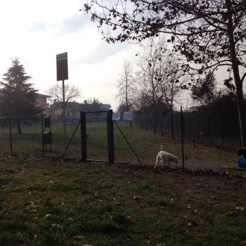 Area Cani San Mauro Pascoli - via Sandro Botticelli
